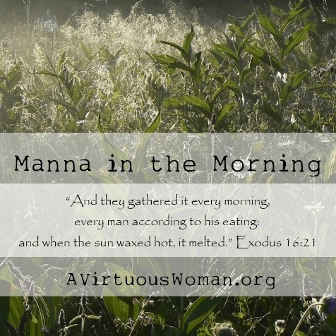 Manna in the Morning @ AVirtuousWoman.org