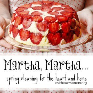 Martha, Martha... {Spring Cleaning Challenge: Day 2} @ AVirtuousWoman.org