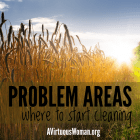 Problem Areas - Where to Start Cleaning {Spring Cleaning for the Heart and Home} @ AVirtuousWoman.org