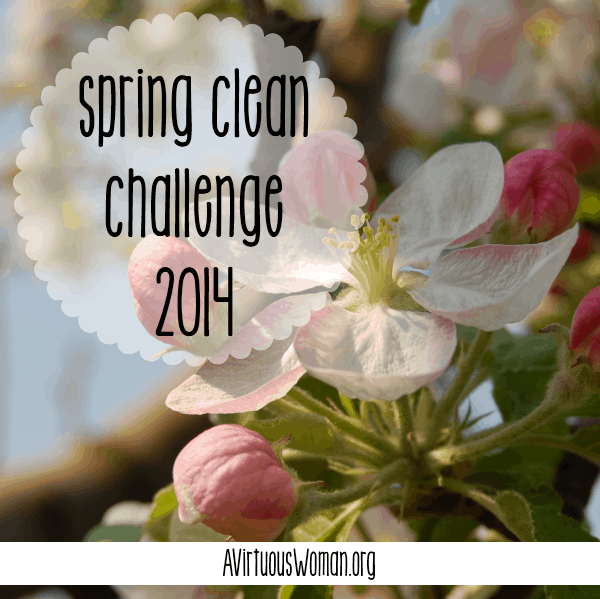 6th Annual Spring Clean Challenge 2014