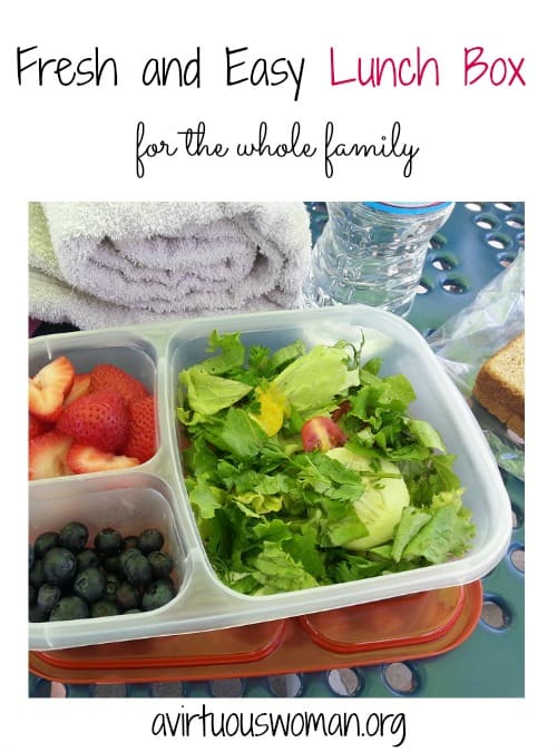 Fresh and Easy Lunch Box Ideas @ AVirtuousWoman.org