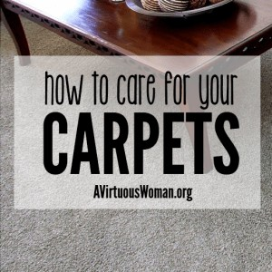 How to Care for Your Carpets {From Chaos to Calm Series: Day 50} @ AVirtuousWoman.org