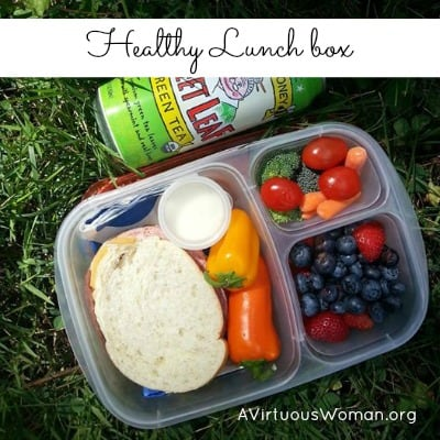 Lunch Box #2 {Healthy Lunch Box for the Whole Family}