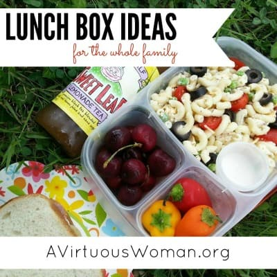 Lunch Box Ideas for the Whole Family @ AVirtuousWoman.org #easylunchboxes