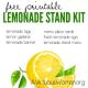 Printable Lemonade Stand Kit @ AVirtuousWoman.org