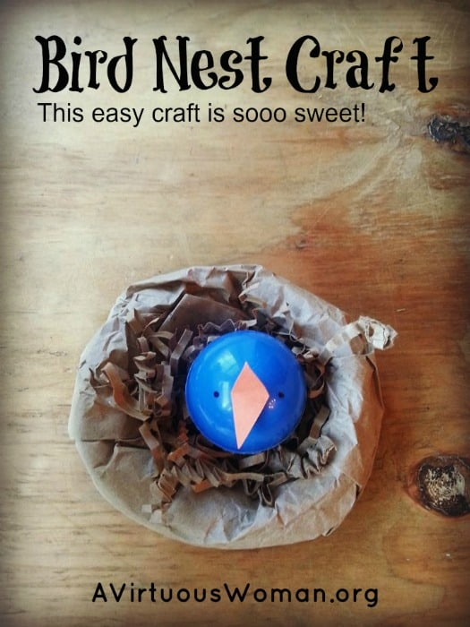 Bird Nest Craft @ AVirtuousWoman.org