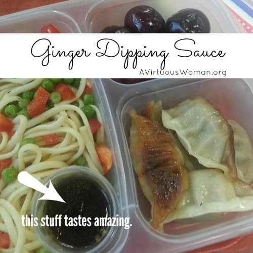Ginger Dipping Sauce for Pot Stickers {Vegetable Dumplings}, Eggrolls, or Spring Rolls @ AVirtuousWoman.org ---- This recipes tastes sooooo good!