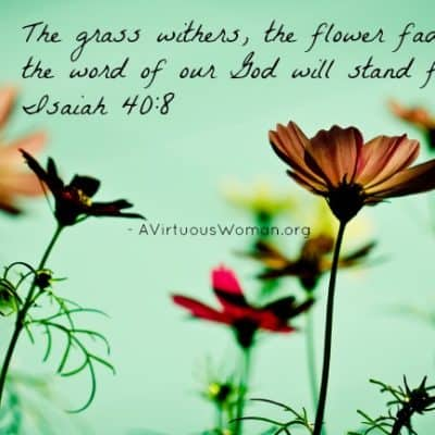 Isaiah 40:8 {Rest}