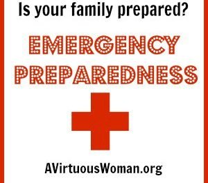 Family Emergency Preparedness Series @ AVirtuousWoman.org