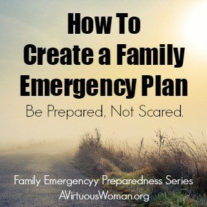 The Family Emergency Plan