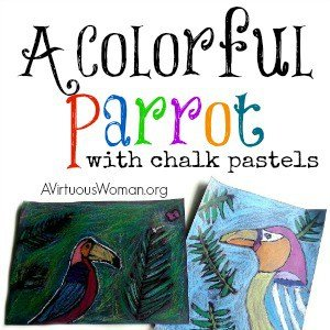 A Colorful Parrot with Chalk Pastels @ AVirtuousWoman.org