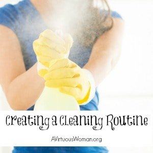 A Cleaning Routine