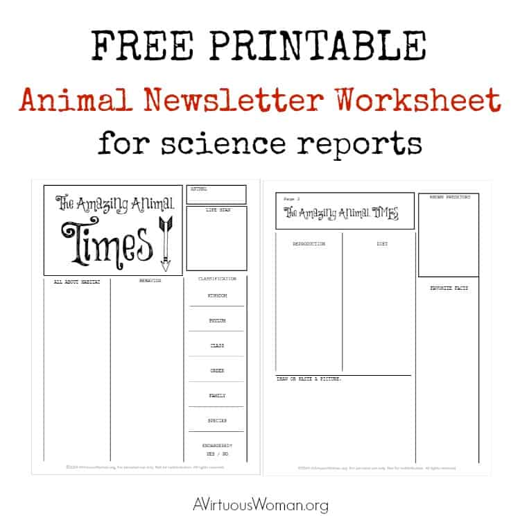Free Printable Animal Newsletter Worksheet/ Report @ AVirtuousWoman.org #homeschool