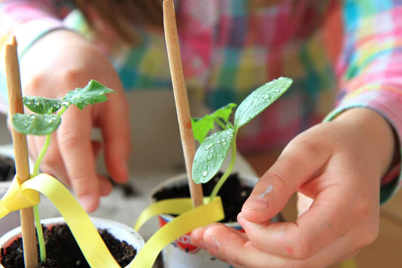 The Big List of Ideas for Gardening with Kids
