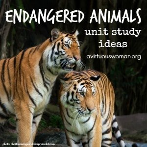 Endangered Animals Unit Study Ideas {Homeschool Freebies} @ AVirtuousWoman.org