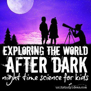Exploring the World After Dark