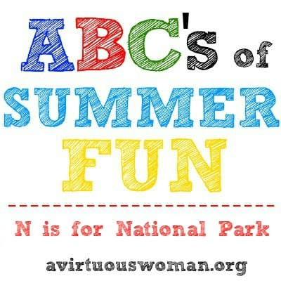 N is for National Parks_a