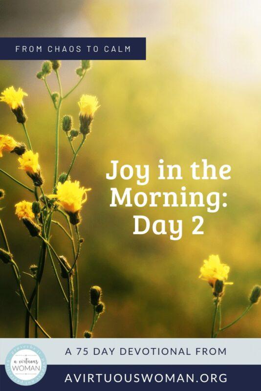 Joy in the Morning @ AVirtuousWoman.org