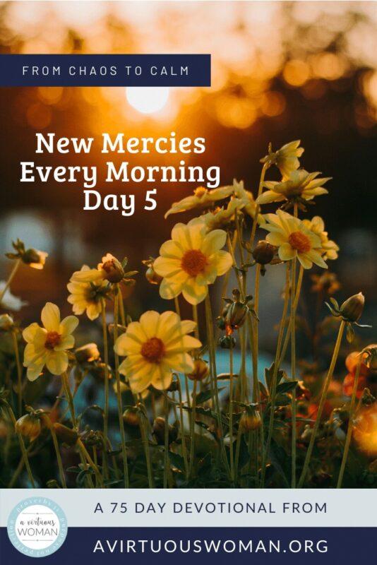New Mercies Every Morning @ AVirtuousWoman.org