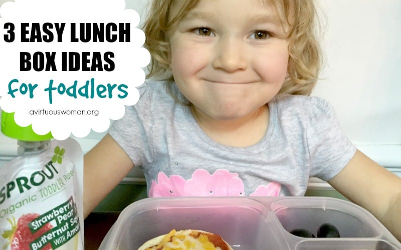 3 Easy Lunch Box Ideas for Toddlers @ AVirtuousWoman.org