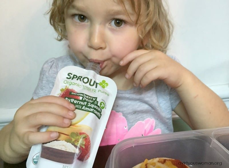 Sprout Organic Toddler Snacks