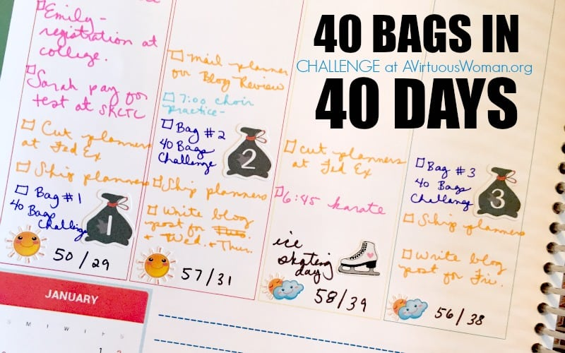 40 Bags in 40 Days: The Challenge