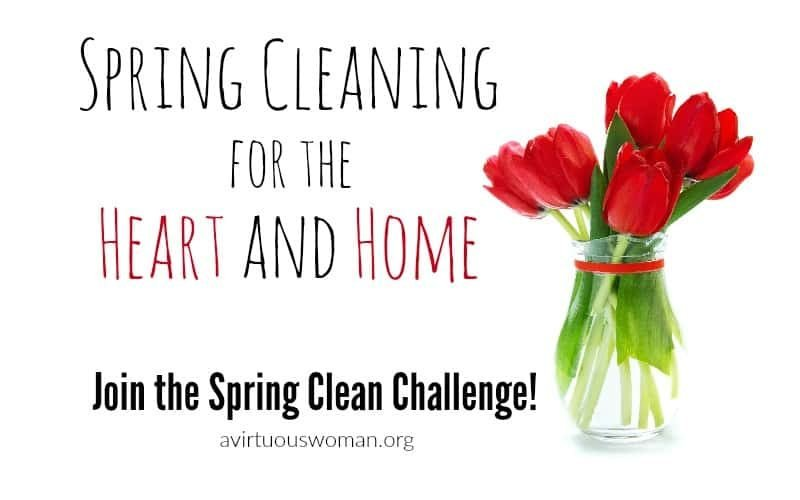7th Annual Spring Clean Challenge