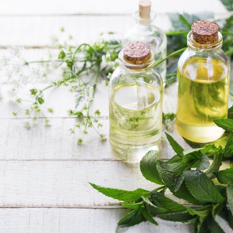 Herbs & Essential Oils Super Bundle!!!