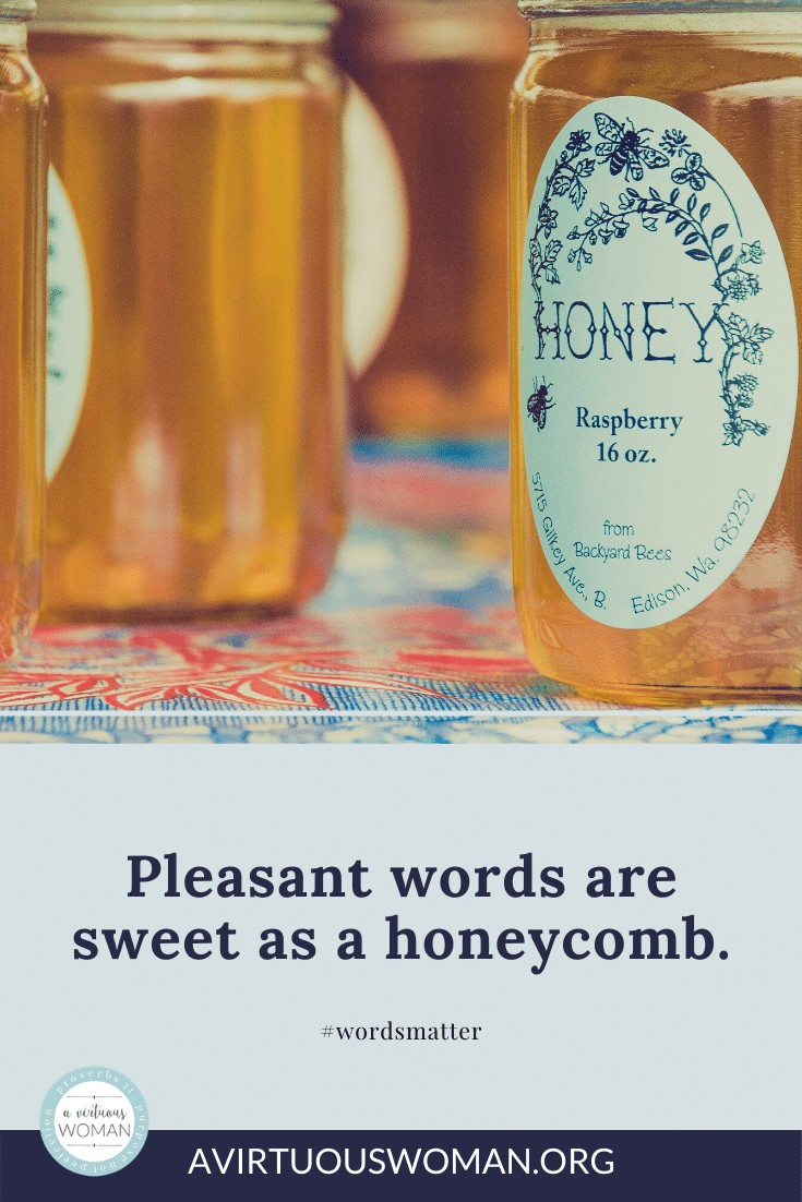 Pleasant words are sweet as a honeycomb. The Proverbs 31 Woman has the law of kindness on her tongue. @ A Virtuous Woman