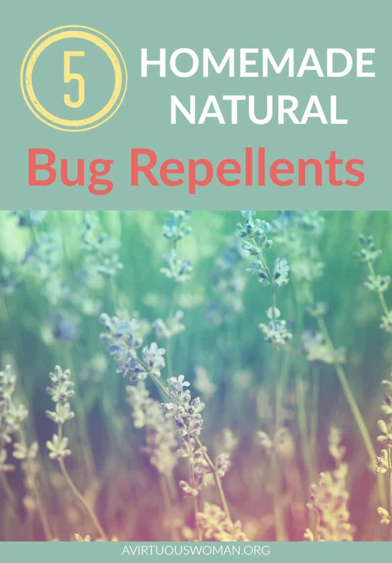 5 Homemade Natural Bug Repellents @ AVirtuousWoman.org
