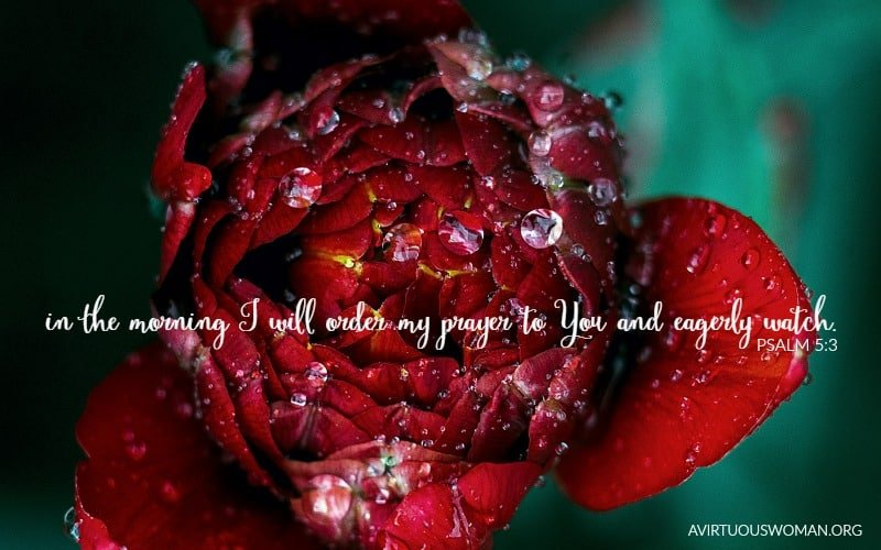 In the morning I will order my prayer to You and eagerly watch. Psalm 5:3 {Free Desktop Background} @ AVirtuousWoman.org