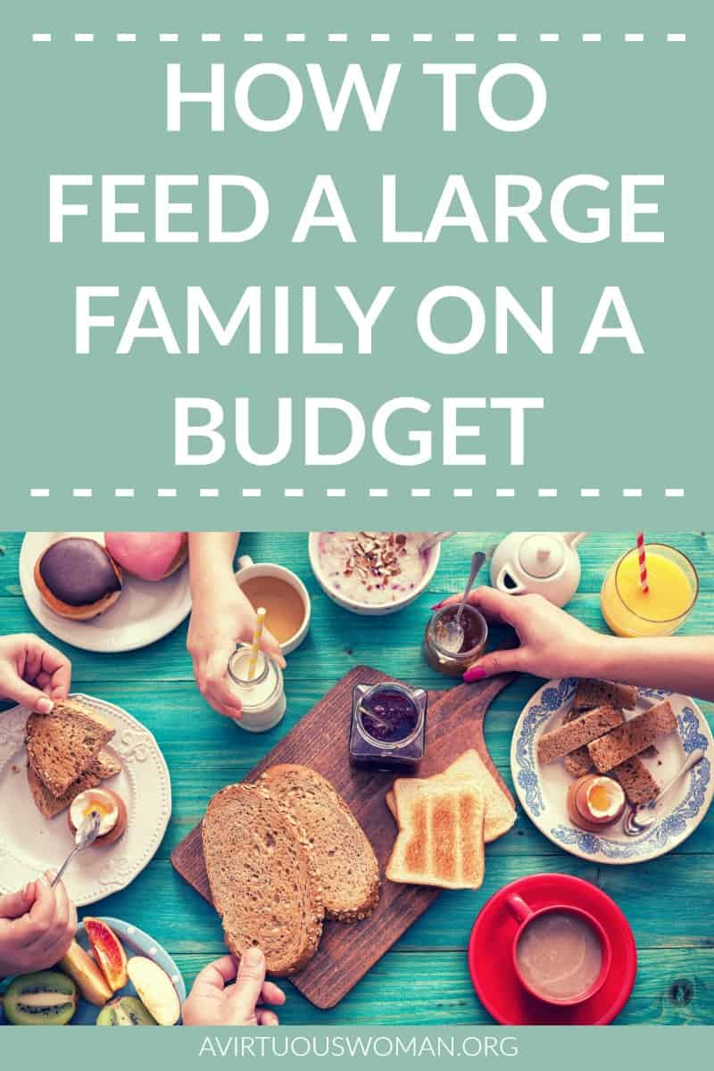 How to Feed a Large Family on a Budget @ AVirtuousWoman.org