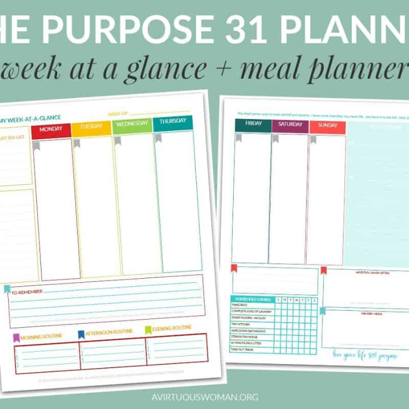 New Layout: Printable Purpose 31 Planner