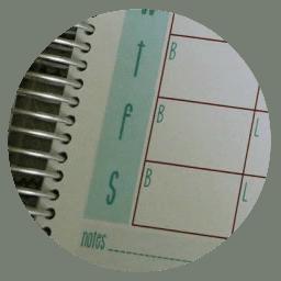 planner testinonial