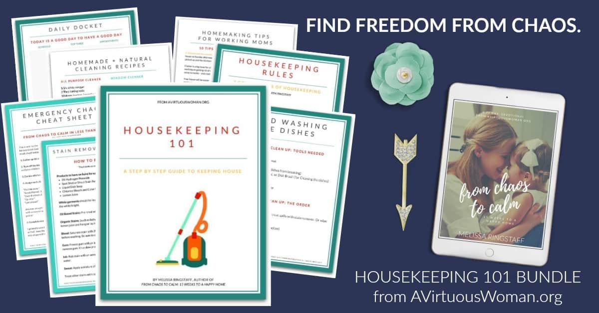 Housekeeping 101 Bundle   Final Offer