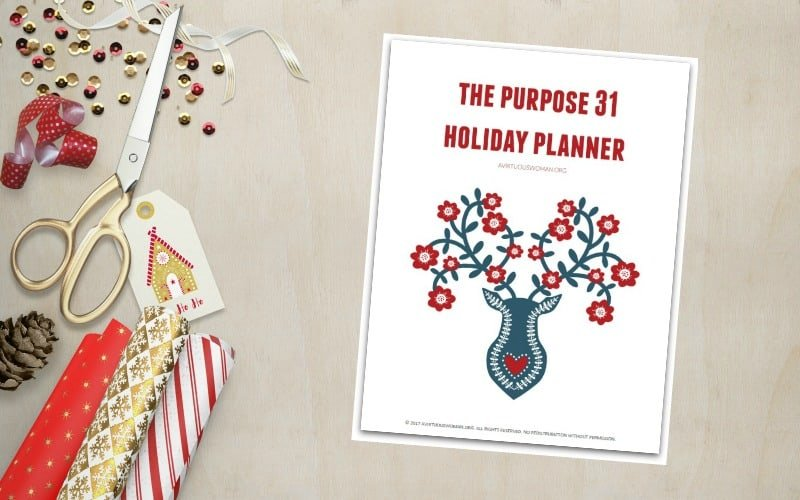 Free Holiday Planner for Limited Time!