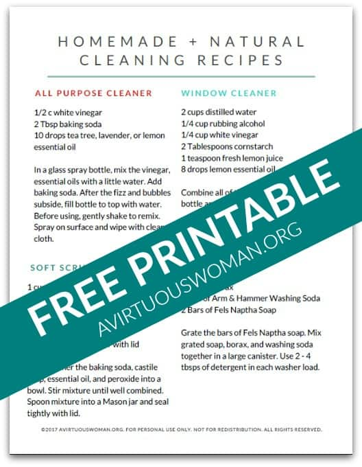 Homemade Natural Cleaners | Free Download @ AVirtuousWoman.org