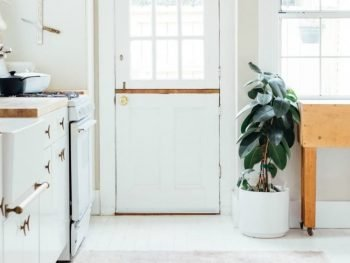 How to Organize Your Kitchen to Reduce Food Waste @ AVirtuousWoman.org