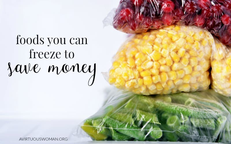 Foods You can Freeze to Save You Money @ AVirtuousWoman.org