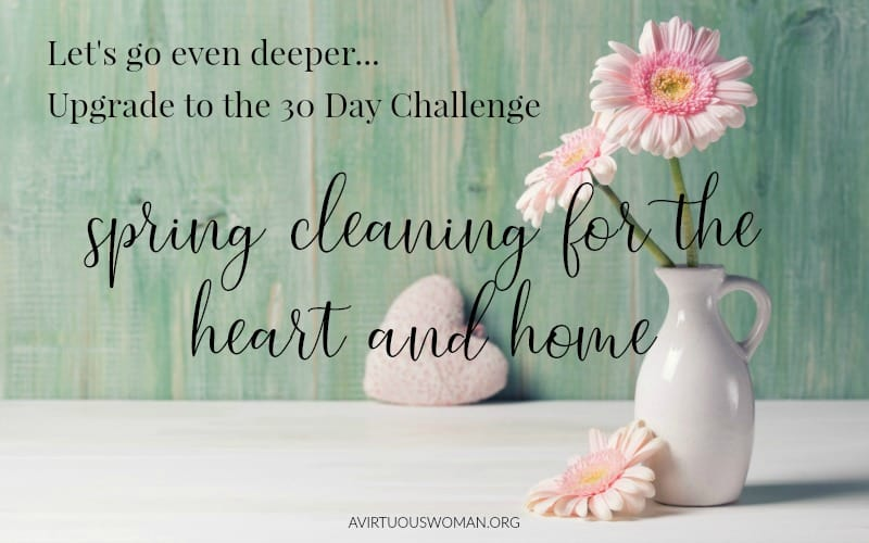 Spring Cleaning 30 Day Challenge @ AVirtuousWoman.org