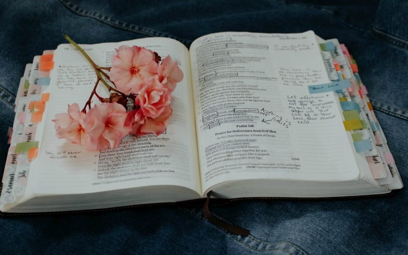 10 Truths About the Proverbs 31 Woman You Should Know