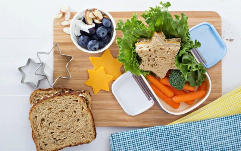 125+ Healthy Lunch Box Ideas @ AVirtuousWoman.org