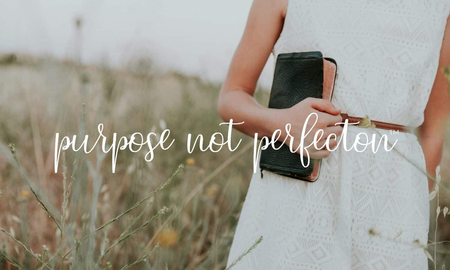 The Proverbs 31 Woman | Purpose Not Perfection @ AVirtuousWoman.org
