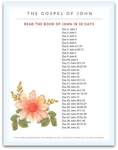 Read The Gospel of John in 30 Days | Scripture Reading Plan @ AVirtuousWoman.org