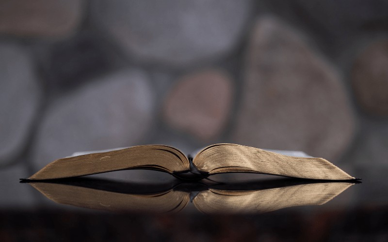 Proverbs 31 Bible Study | The Bride of Christ