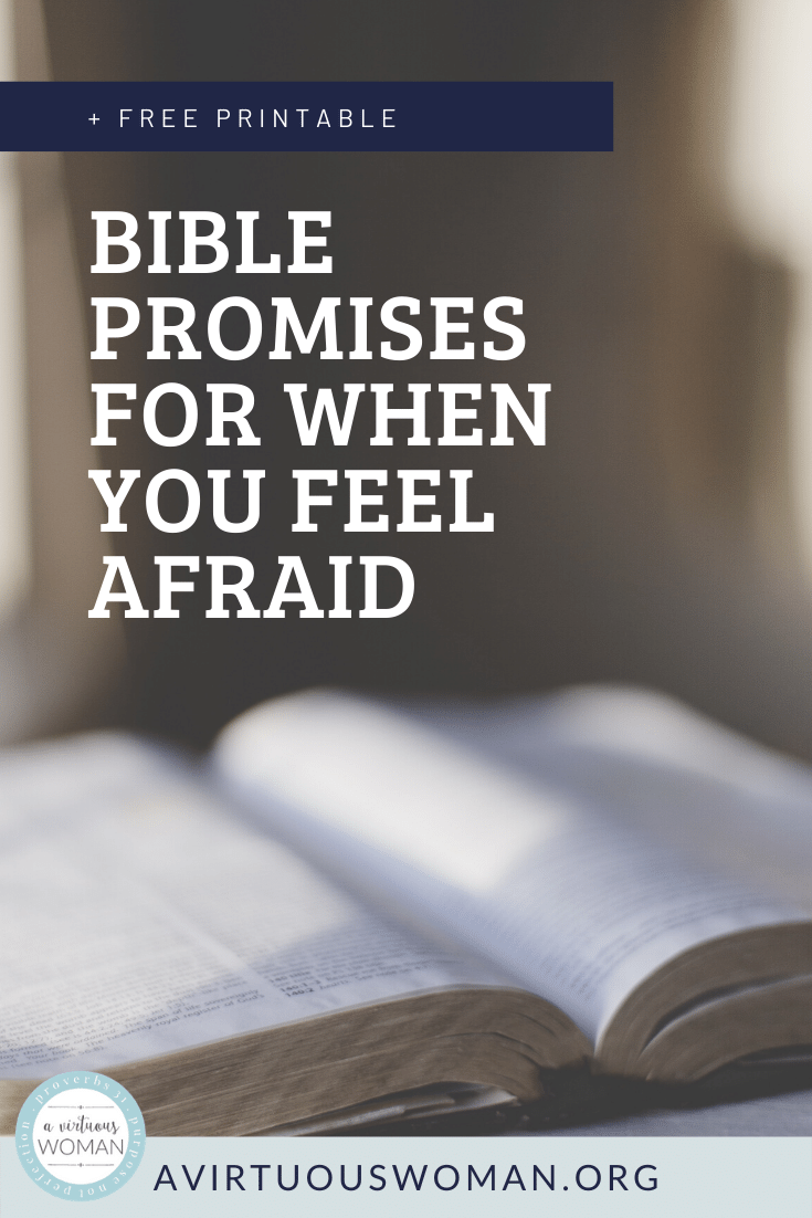 Bible Promises for When You Feel Afraid @ AVirtuousWoman.org