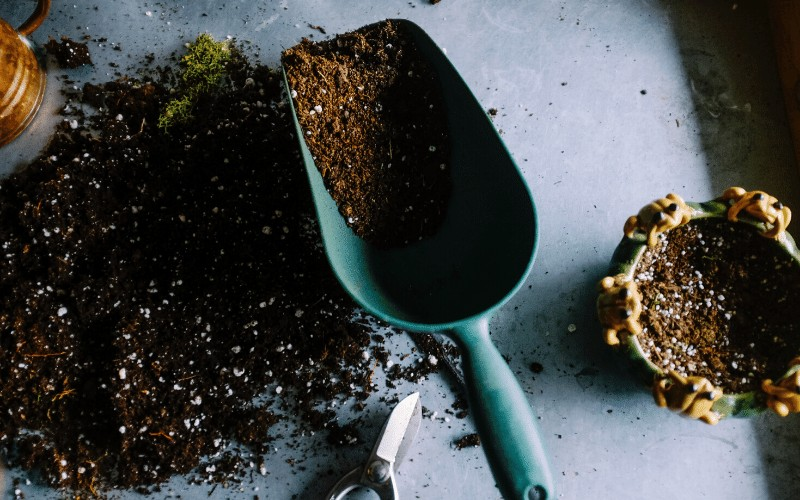 Old Fashioned Homemaking Skills: Gardening @ AVirtuousWoman.org