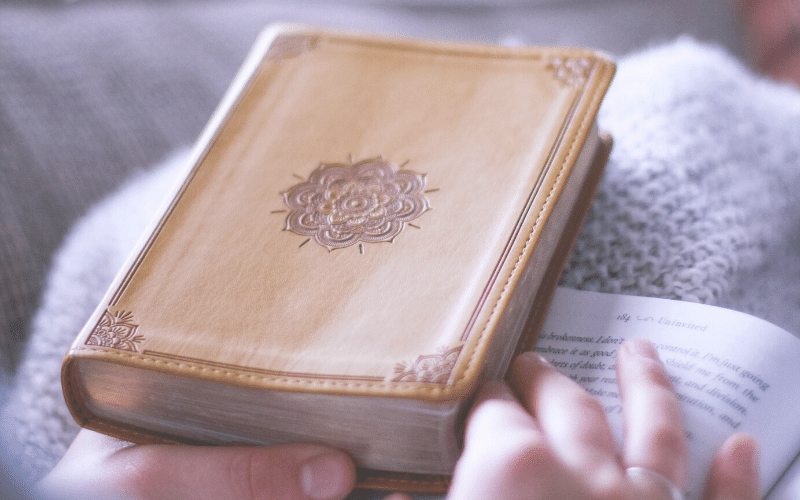 Increase Our Faith | Proverbs 31 Devotions