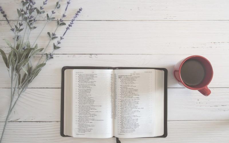 Getting in God's Word | 4 Simple Steps