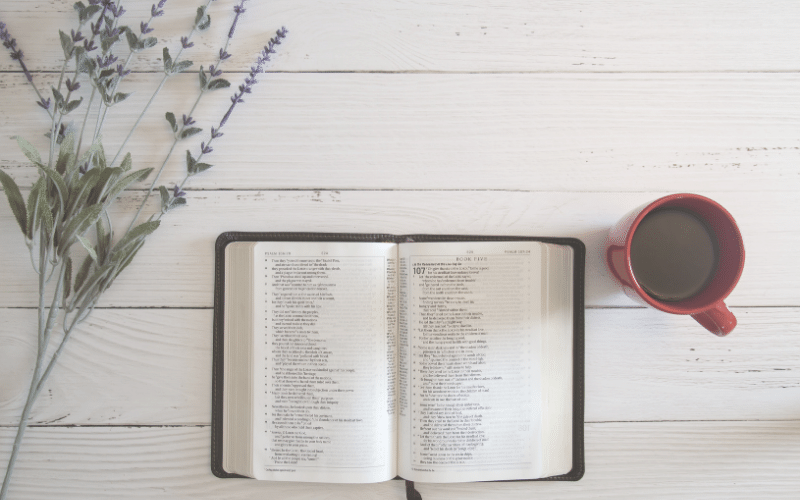 Getting in God's Word | 4 Simple Steps